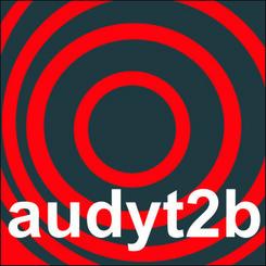 Audyt2Biznes Sp. z o.o.