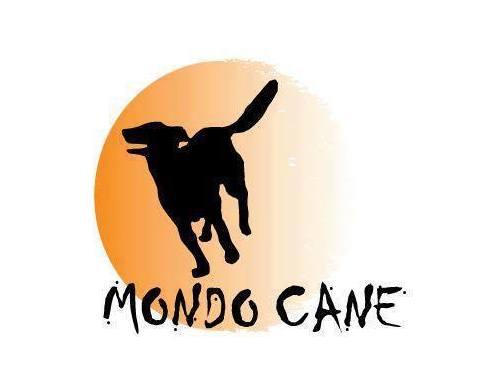Fundacja MONDO CANE