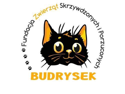 Fundacja Zwierząt Skrzywdzonych i Porzuconych BUDRYSEK
