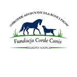 Fundacja Corde Canis - Wielkopsy Adopcje