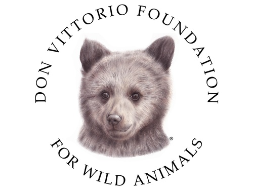 Don Vittorio Foundation for Wild Animals