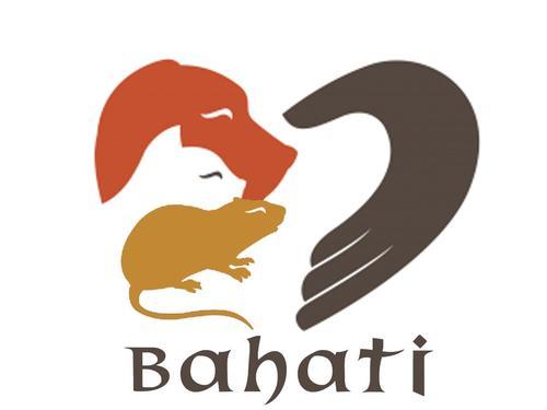 Fundacja Dla Zwierząt Bahati