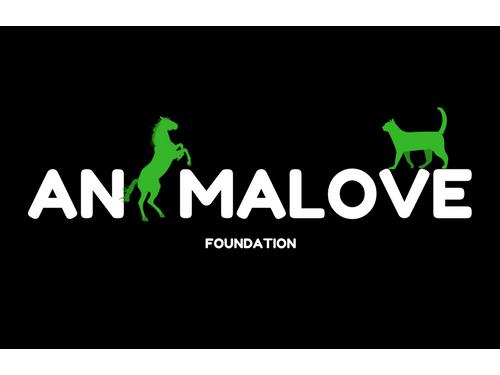 Fundacja animaLOVE
