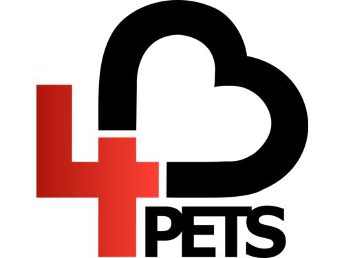 Fundacja Hearts4Pets