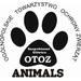 OTOZ Animals Gliwice