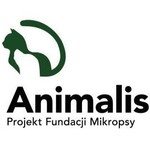 Fundacja Mikropsy - Projekt Animalis