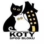 Gdańska Fundacja Pomocy Zwierzętom Koty spod Bloku