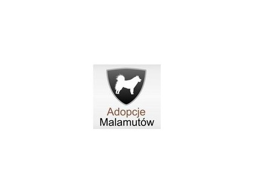 Fundacja Adopcje Malamutów